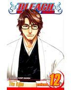 Bleach (Shonen Jump Manga)