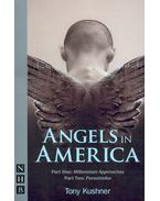 Angels in America - Part One: Millennium Approaches; Part Two: Perestroika