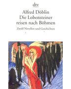 Die Lobensteiner reisen nach Böhmen: Zwölf Novellen und Geschichten - Döblin, Alfred