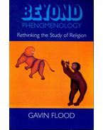 Beyond Phenomenology - Rethinking the Study of Religion