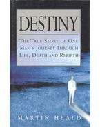 Destiny: The True Story of One Man's Journey Through Life, Death and Rebirth