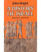 A History of Israel - Revised Edition