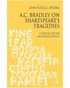 A C. Bradley on Shakespeare's Tragedies: A Concise Edition and Reassessment