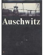 Auschwitz: Crime against Humanity