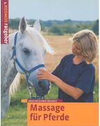 Massage für Pferde
