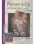 Perser und Co. - Langhaarkatzen und Exotic Shorthair