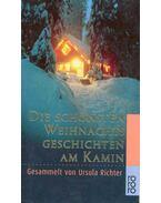 Die schönsten Weihnachtsgeschichten am Kamin - Richter, Ursula