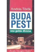 Budapest, Una guida diversa