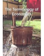 The Terminology of Economics - Illusions and Assets