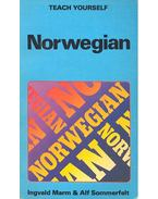 Teach Yourself Norwegian