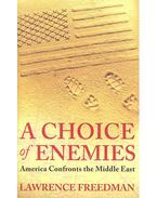 A Choice of Enemies - America Confronts the Middle East