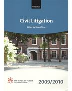 Civil Litigation 2009-2010
