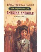 Den lange reisen - Amerika, Amerika!