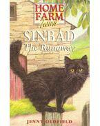 Sinbad The Runaway