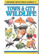 Town & City Wildlife