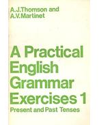 A Parctical English Grammar Exersises 1 - Present and Past Tenses