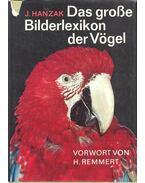 Das grosse Bilderlexikon der Vögel