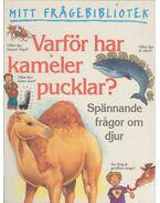 Varför har kameler pucklar?