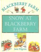 Snow at Blackberry Farm