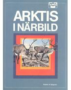 Arktis I Närbild