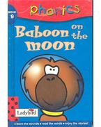 Baboon on the moon