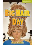 Big Hair Day - Starter Level