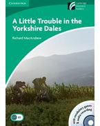 A Little Trouble in the Yorkshire - Level 3 with CD-ROM