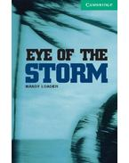 Eye of the Storm - Level 3