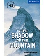 In the Shadow of the Mountain - Level 5