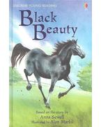 Black Beauty - Series Two