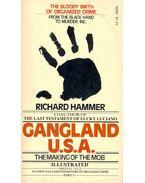 Gangland U.S.A.