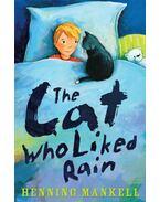 The Cat Who Liked Rain