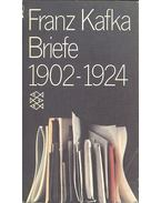 Briefe 1902-1924