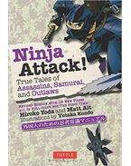 Ninja Attack: True Tales of Assassins, Samurai, and Outlaws
