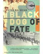 Black Dog of Fate