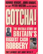 Gotcha!  - The Untold Story of Britain's Biggest Cash Robbery