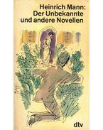 Der Unbekannte und andere Novellen