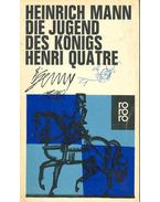 Die Jugend des Königs Henri Quarte
