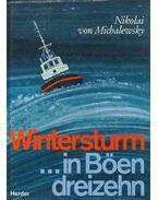 Wintersturm in Böen dreizehn