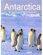 Antarctica - Die faszinierende Welt im Ewigen Eis