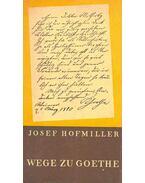Wege zu Goethe