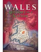 History of a Nation - Wales