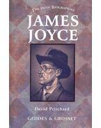 The Irish Biographies - James Joyce