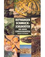 Rotwangen Schmuckschildkröten und andere Schmuckschildkröten