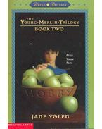 The Young Merlin Trilogy - Book Two - Find Your Fate