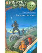 La notte dei ninja