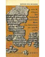Die Botschaft vom Toten Meer - Das Geheimnis der Schriftrollen