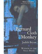 Bernard and the Cloth Monkey
