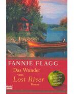 Das Wunder von Lost River