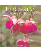 Fuchsias and Bedding Plants
